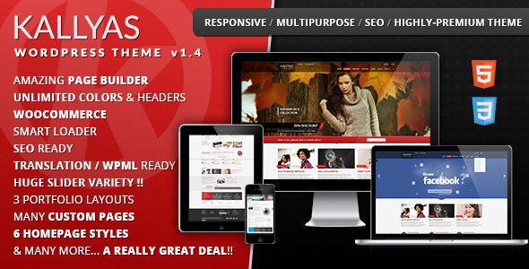 KALLYAS Responsive WordPress Theme