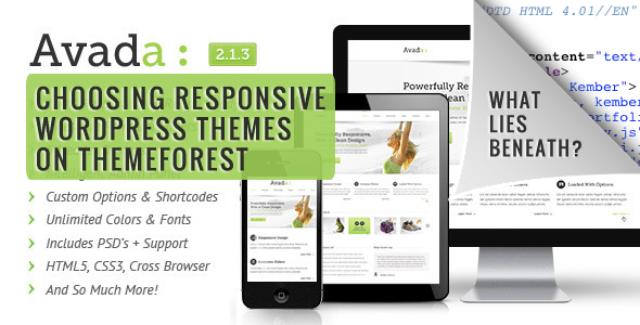 How To Test The Best Responsive WordPress Themes