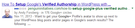 Google+ Verified Authorship in Google's Search Results Example Screenshot