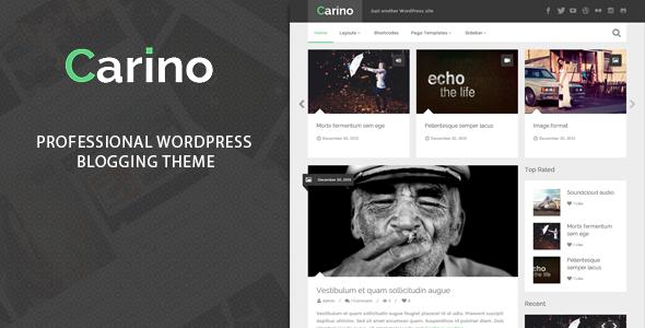 Carino WordPress Theme