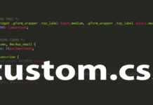 How To Use a Custom Stylesheet in WordPress