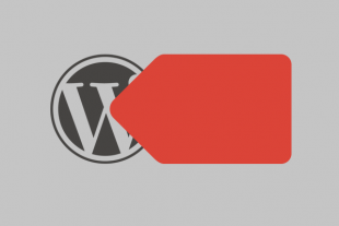 Google Tag Manager Tracking Guide for WordPress